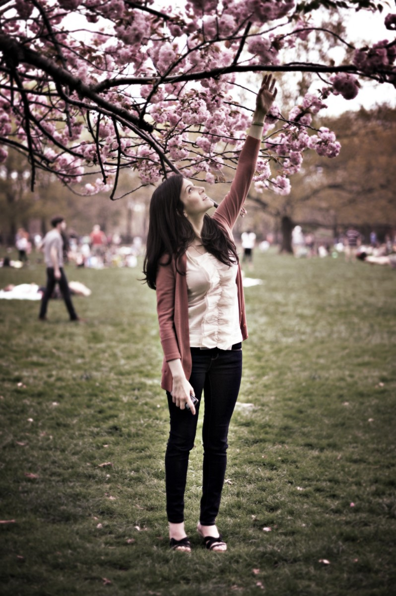 Picking cherry blossoms