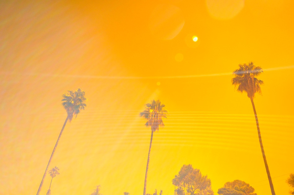 Los Angeles Orange Sky and Palms