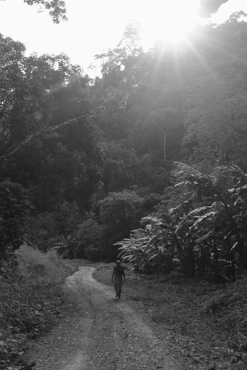 Man walking through Costa Rica rainforest